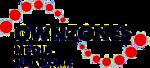 Ownzones Logo Small
